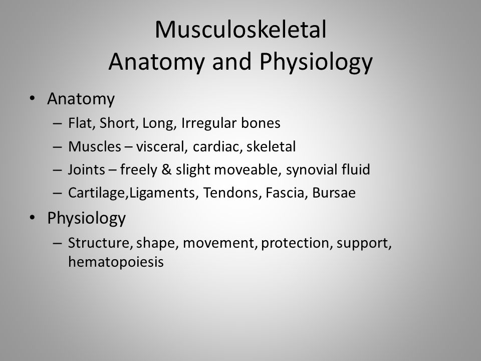 Musculoskeletal Anatomy and Physiology Anatomy – Flat, Short, Long, Irregular bones – Muscles – visceral, cardiac, skeletal – Joints – freely & slight moveable, synovial fluid – Cartilage,Ligaments, Tendons, Fascia, Bursae Physiology – Structure, shape, movement, protection, support, hematopoiesis