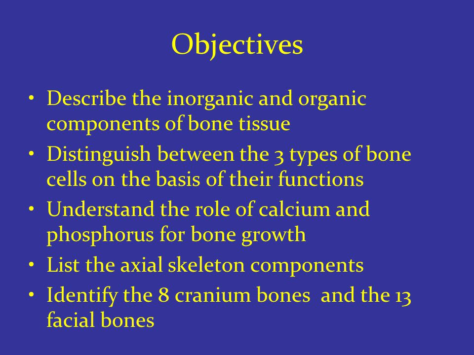 Objectives Describe the inorganic and organic components of bone tissue Distinguish between the 3 types of bone cells on the basis of their functions Understand the role of calcium and phosphorus for bone growth List the axial skeleton components Identify the 8 cranium bones and the 13 facial bones