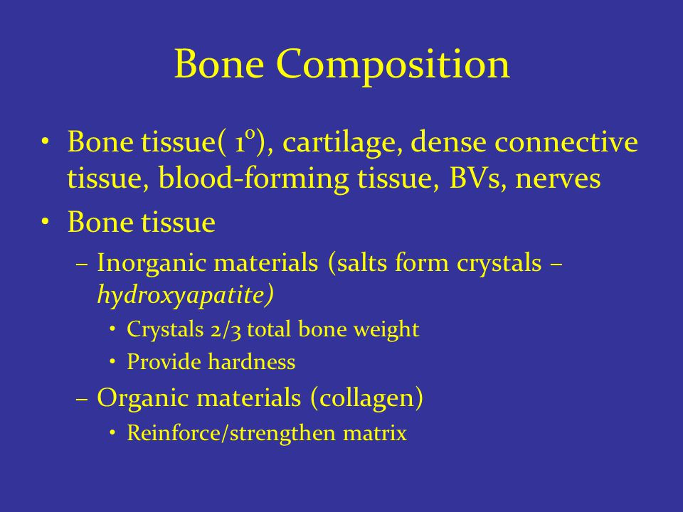 Bone Composition Bone tissue( 1 0 ), cartilage, dense connective tissue, blood-forming tissue, BVs, nerves Bone tissue –Inorganic materials (salts form crystals – hydroxyapatite) Crystals 2/3 total bone weight Provide hardness –Organic materials (collagen) Reinforce/strengthen matrix