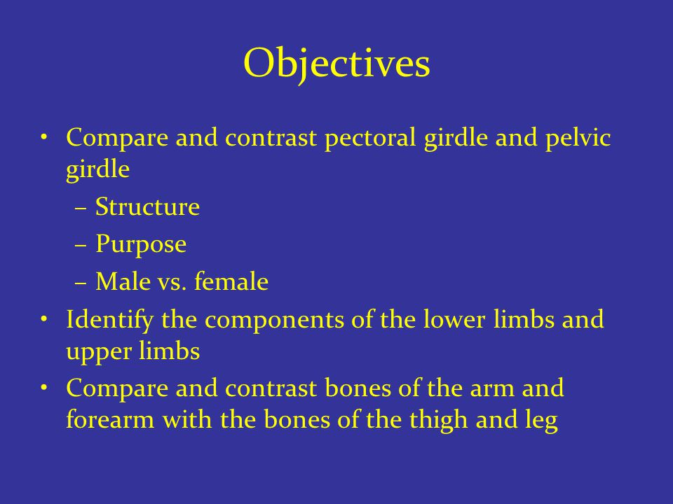 Objectives Compare and contrast pectoral girdle and pelvic girdle –Structure –Purpose –Male vs.