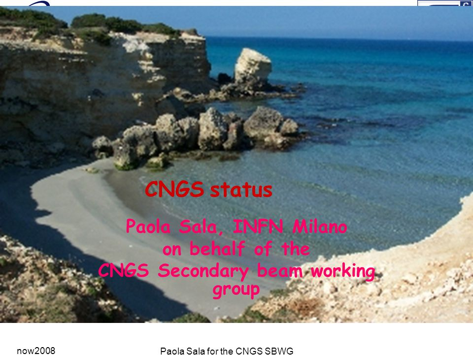 now2008 Paola Sala for the CNGS SBWG CNGS status Paola Sala, INFN Milano on behalf of the CNGS Secondary beam working group