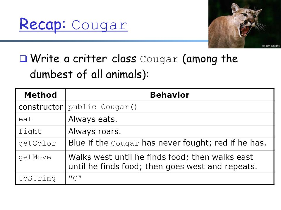 Recap: Cougar  Write a critter class Cougar (among the dumbest of all animals): MethodBehavior constructor public Cougar() eat Always eats.