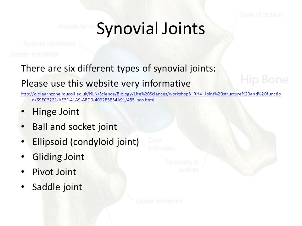 Synovial Joints There are six different types of synovial joints: Please use this website very informative http://oldlearnzone.loucoll.ac.uk/NLN/Science/Biology/Life%20Sciences/workshop3_RH4_Joint%20structure%20and%20functio n/69EC3221-AE3F-41A9-AED0-4092E5834A91/485_sco.html Hinge Joint Ball and socket joint Ellipsoid (condyloid joint) Gliding Joint Pivot Joint Saddle joint