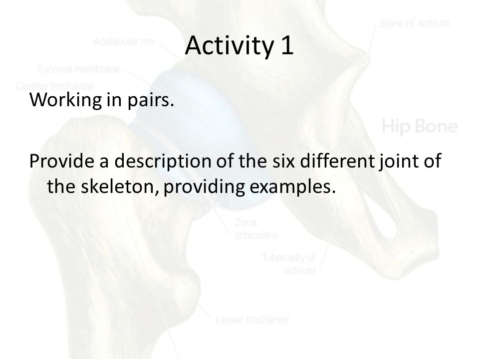 Activity 1 Working in pairs. Provide a description of the six different joint of the skeleton, providing examples.