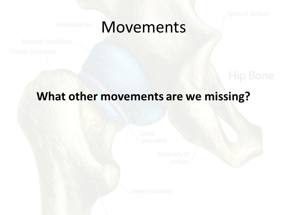 Movements What other movements are we missing?