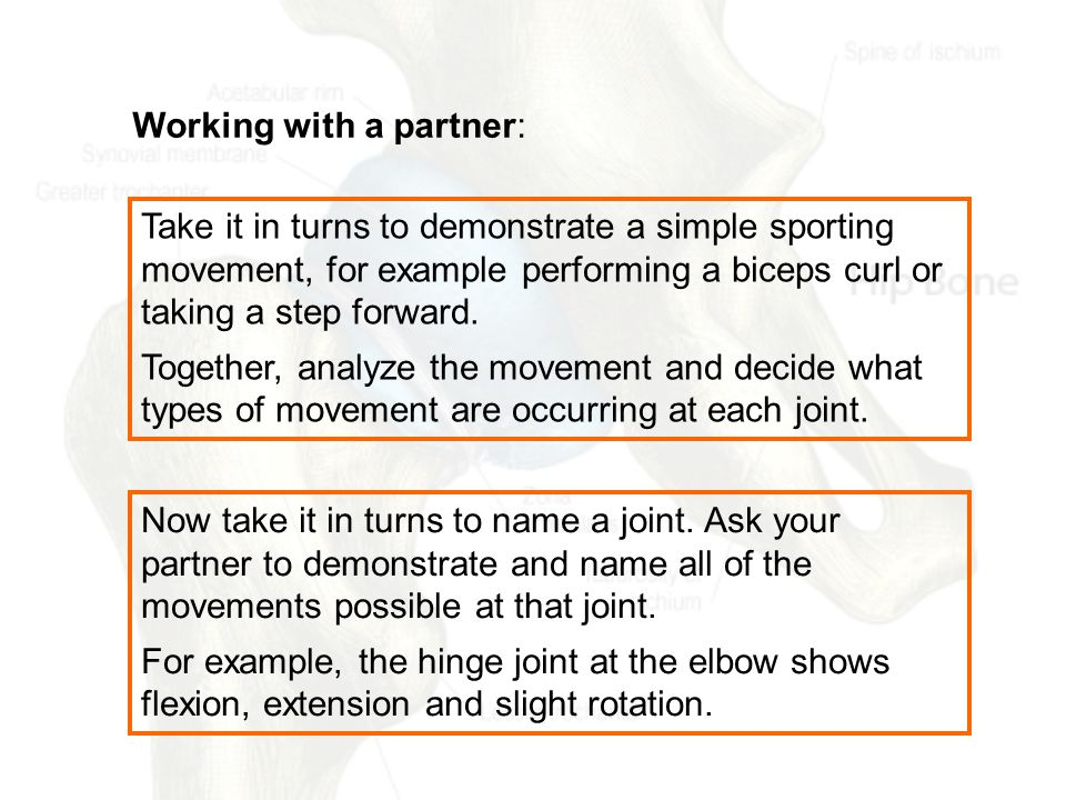 Working with a partner: Take it in turns to demonstrate a simple sporting movement, for example performing a biceps curl or taking a step forward.