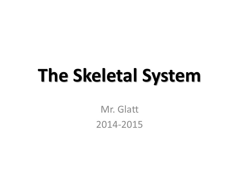 The Skeletal System Mr. Glatt 2014-2015