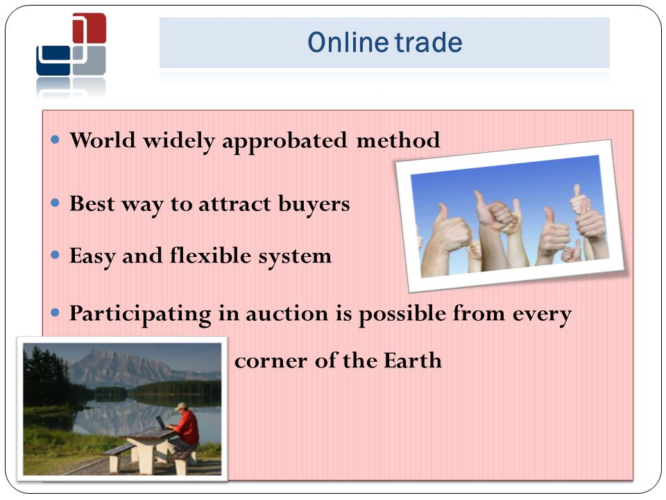 Changes in legislation National Bureau of Enforcement lunched Online Auction Experience of other countries were taken into consideration Demands of contemporary society were taken into account February 1, 2011