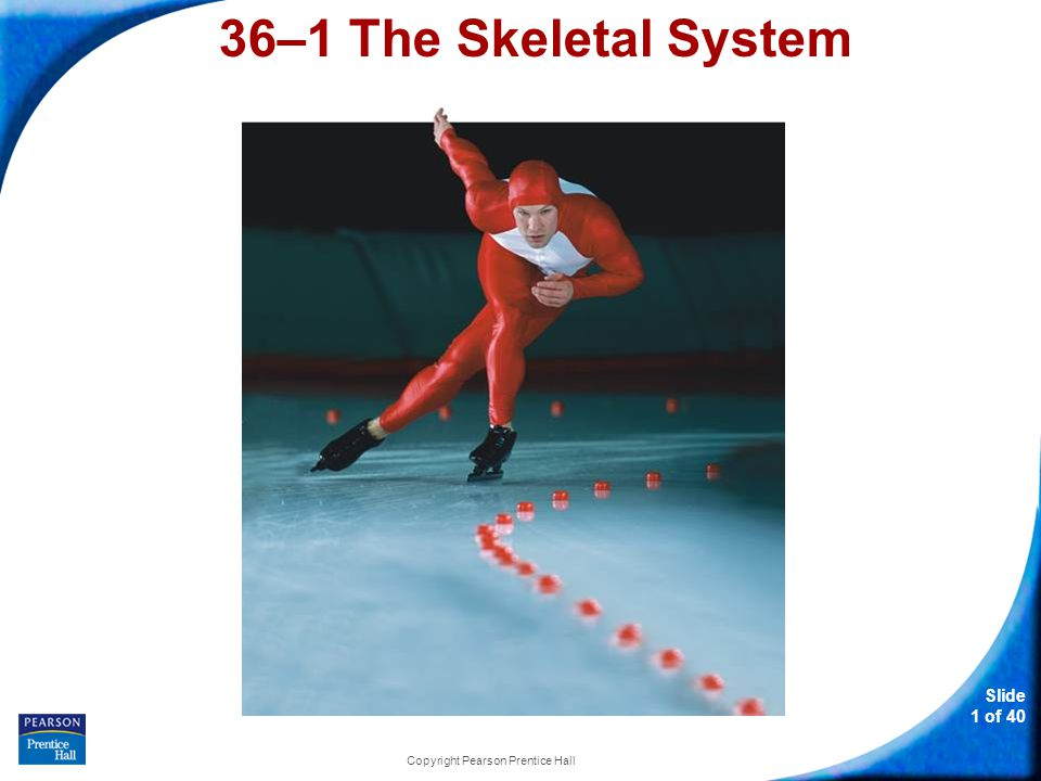 36–1 The Skeletal System Slide 22 of 40 Copyright Pearson Prentice Hall Skeletal System Disorders Excessive strain on a joint may produce inflammation, in which excess fluid causes swelling, pain, heat, and redness.