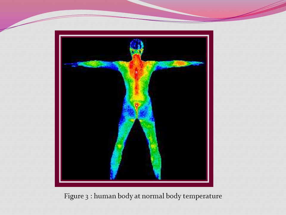 Figure 3 : human body at normal body temperature