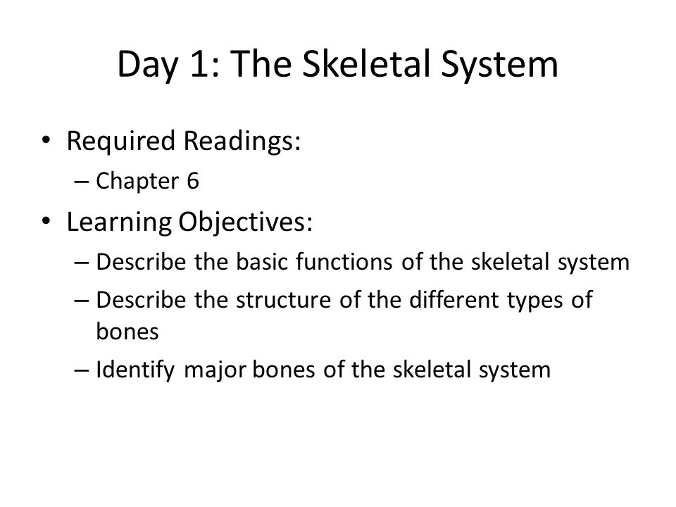 Activity 2 There are 4 types of bones: – Long, Short, Irregular, flat For each of the bones we looked at last lesson, classify them as one of the above – Skull – Sternum, clavicle, scapula, ribs – Humerus, ulna, radius, carpals, metacarpals, phalanges – Vertebral column, sacrum, coccyx, pelvis – Femur, tibia, fibula, patella, tarsals, metatarsals, phalanges Time: 15 minutes