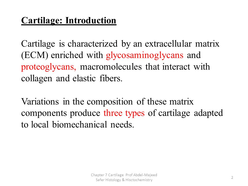 Cartilage: Introduction Cartilage is characterized by an extracellular matrix (ECM) enriched with glycosaminoglycans and proteoglycans, macromolecules