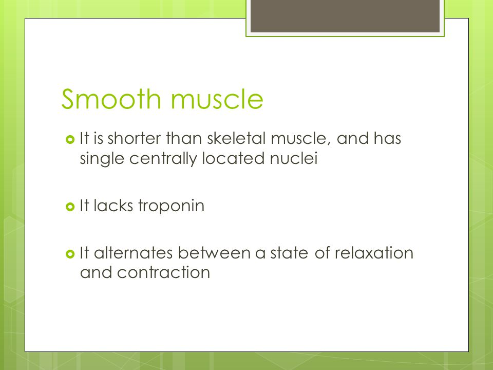 Smooth muscle  It is shorter than skeletal muscle, and has single centrally located nuclei  It lacks troponin  It alternates between a state of rel