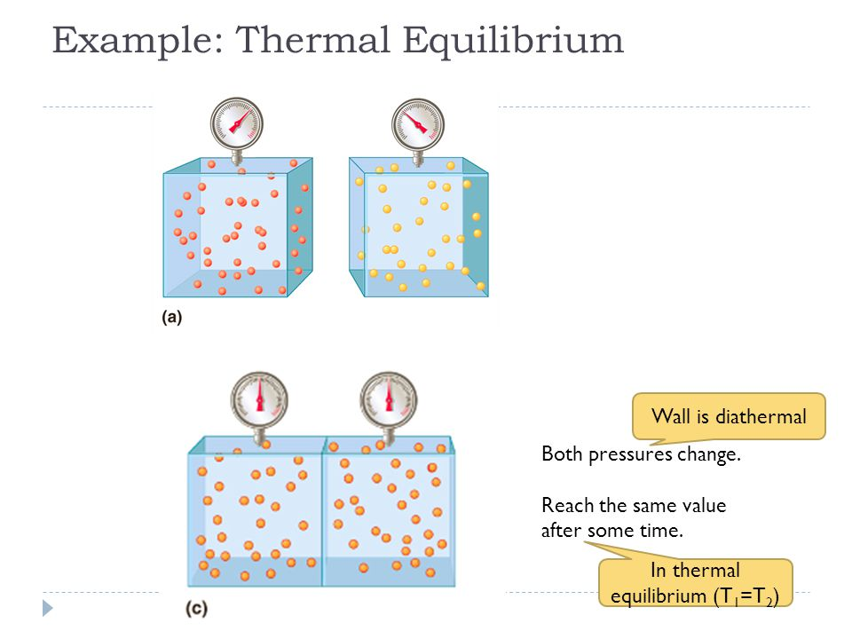 Example: Thermal Equilibrium Both pressures change.