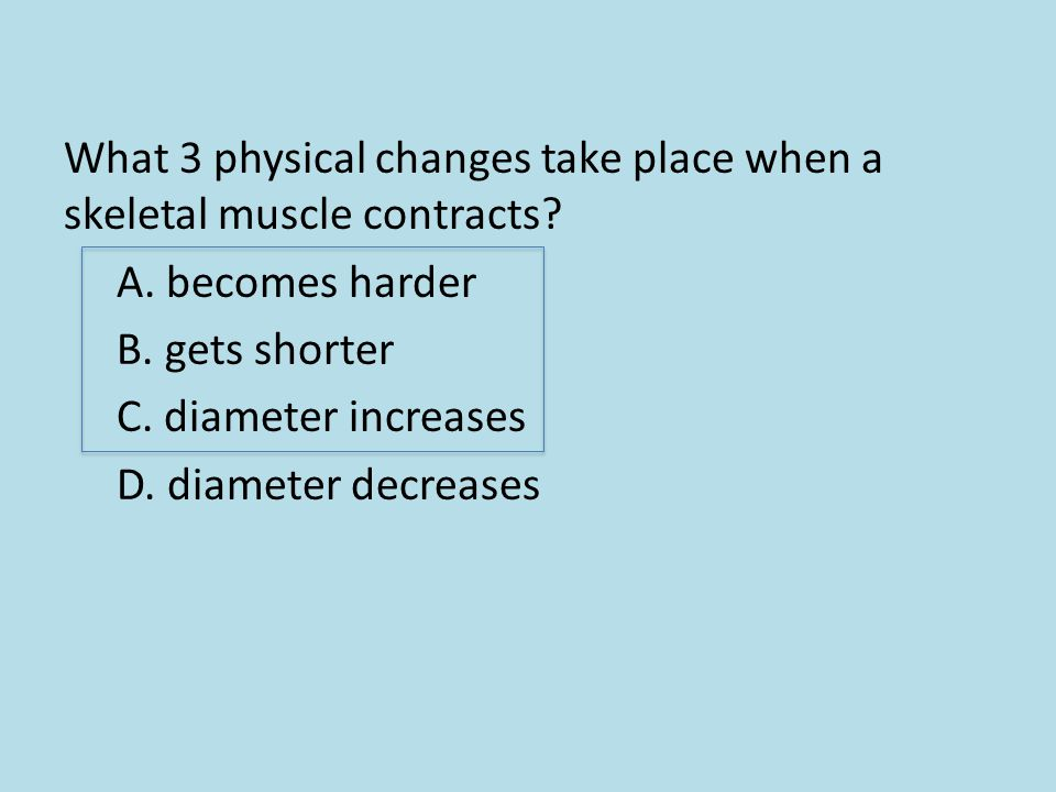 What 3 physical changes take place when a skeletal muscle contracts? A. becomes harder B. gets shorter C. diameter increases D. diameter decreases