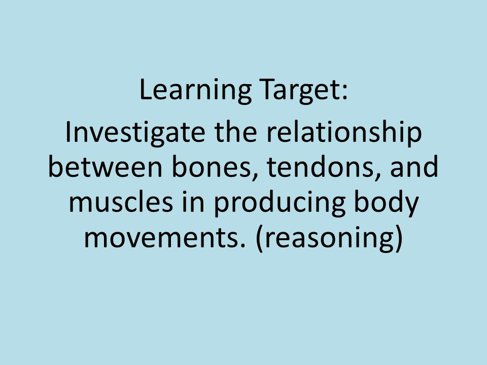 Learning Target: Investigate the relationship between bones, tendons, and muscles in producing body movements. (reasoning)