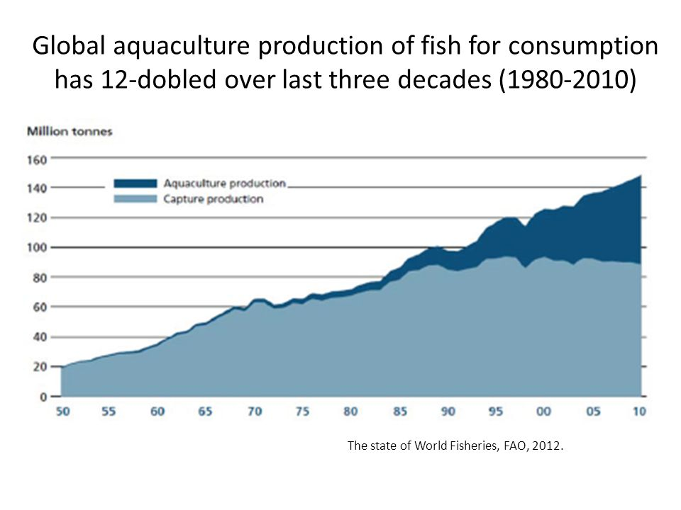 Global aquaculture production of fish for consumption has 12-dobled over last three decades (1980-2010) The state of World Fisheries, FAO, 2012.