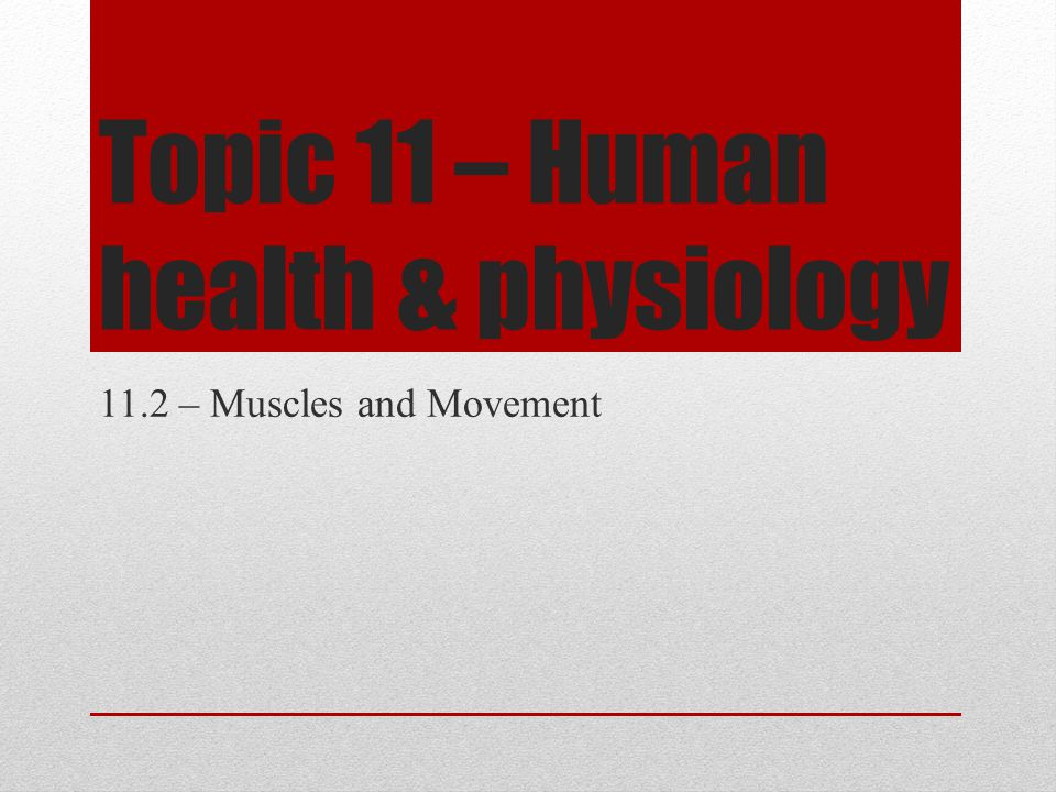 Topic 11 – Human health & physiology 11.2 – Muscles and Movement