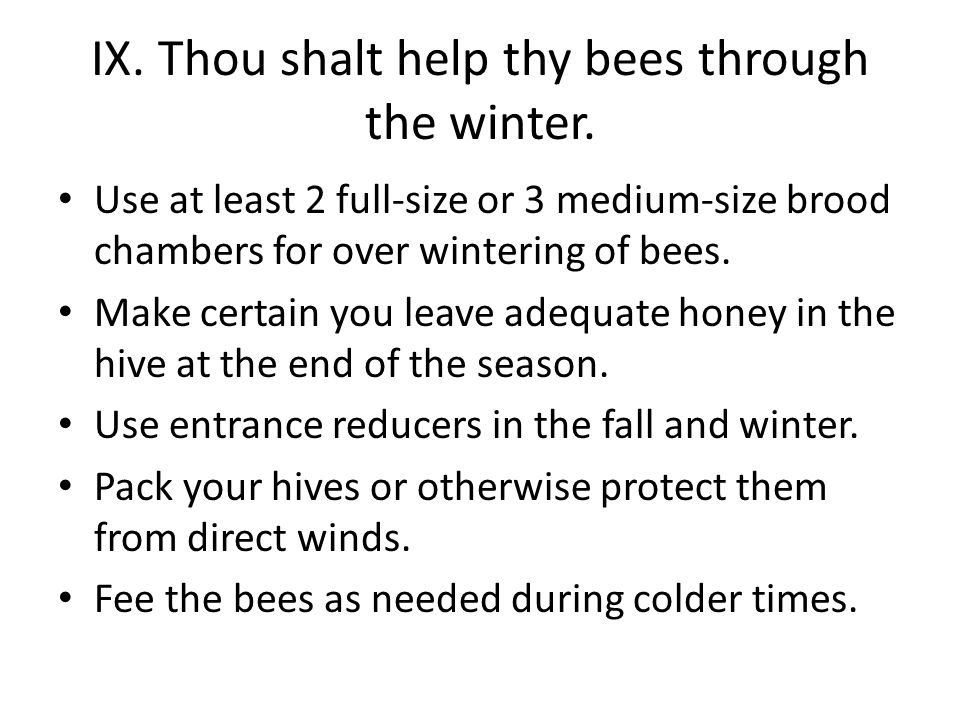IX. Thou shalt help thy bees through the winter.