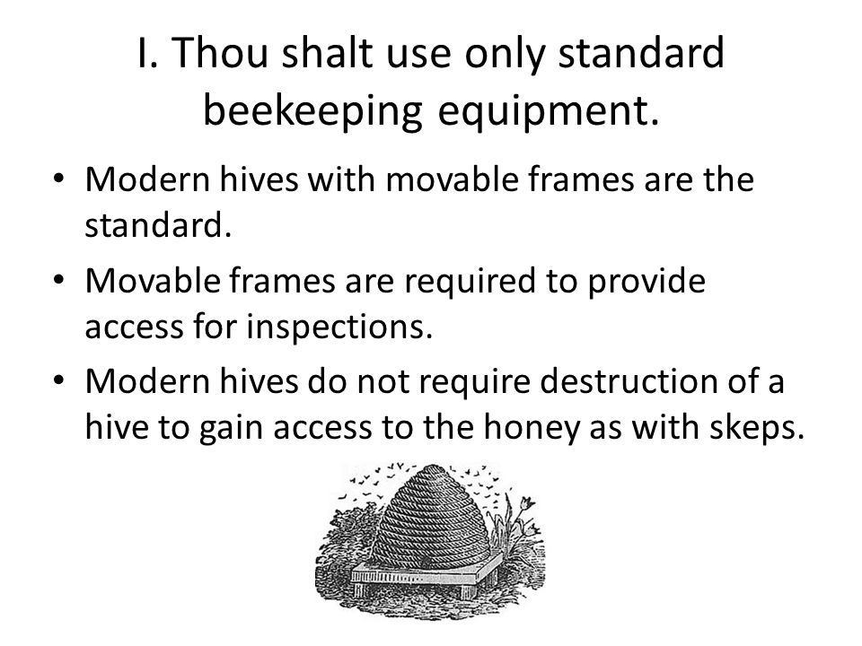 II.Thou shalt be considerate of non- beekeeping neighbors.