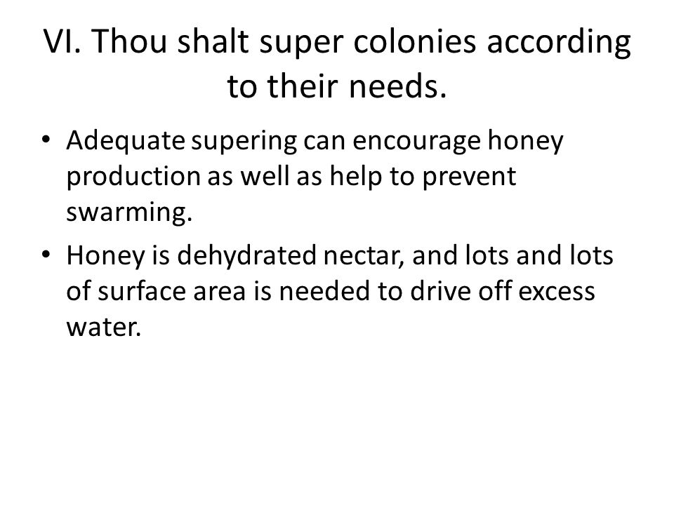 VII.Thou shalt take pride in honey and other hive products.