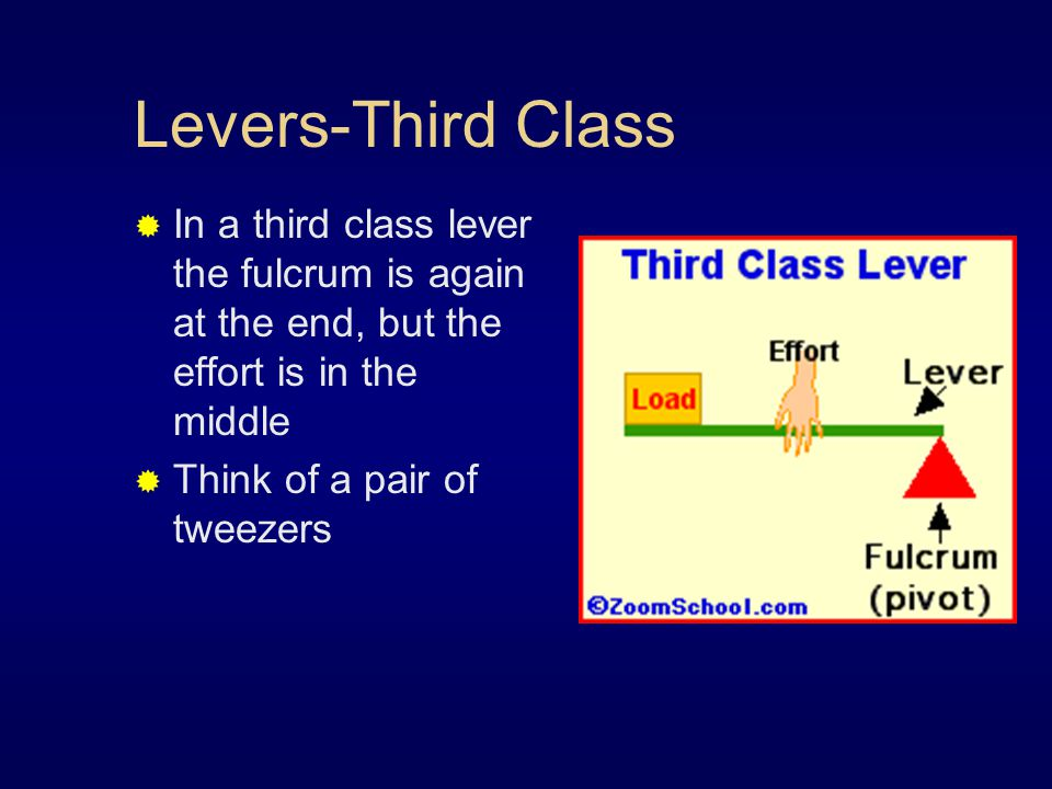 Levers-Third Class  In a third class lever the fulcrum is again at the end, but the effort is in the middle  Think of a pair of tweezers