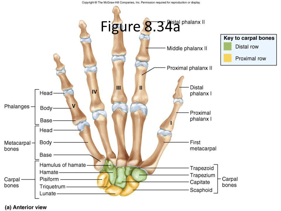 Figure 8.34a