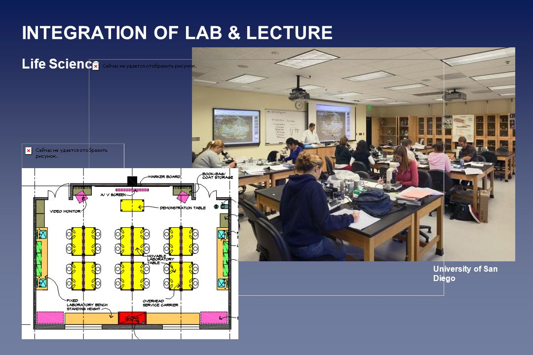 Life Science University of San Diego INTEGRATION OF LAB & LECTURE