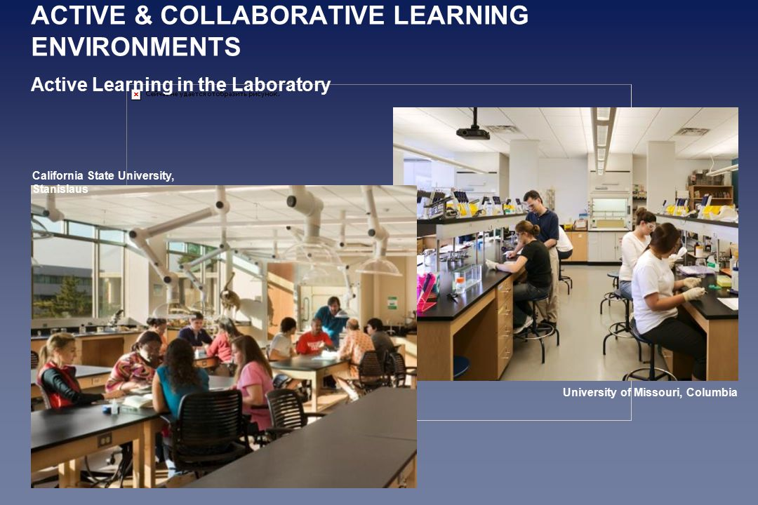 California State University, Stanislaus University of Missouri, Columbia ACTIVE & COLLABORATIVE LEARNING ENVIRONMENTS Active Learning in the Laboratory