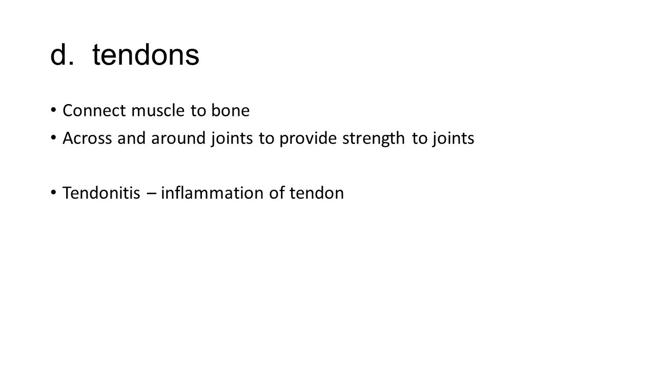 d. tendons Connect muscle to bone Across and around joints to provide strength to joints Tendonitis – inflammation of tendon