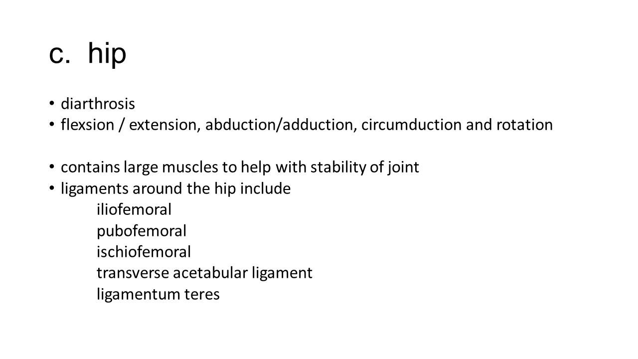 c. hip diarthrosis flexsion / extension, abduction/adduction, circumduction and rotation contains large muscles to help with stability of joint ligame