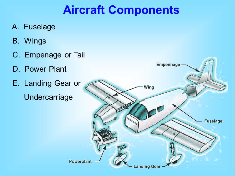 A. Fuselage B. Wings C. Empenage or Tail D. Power Plant E. Landing Gear or Undercarriage Aircraft Components