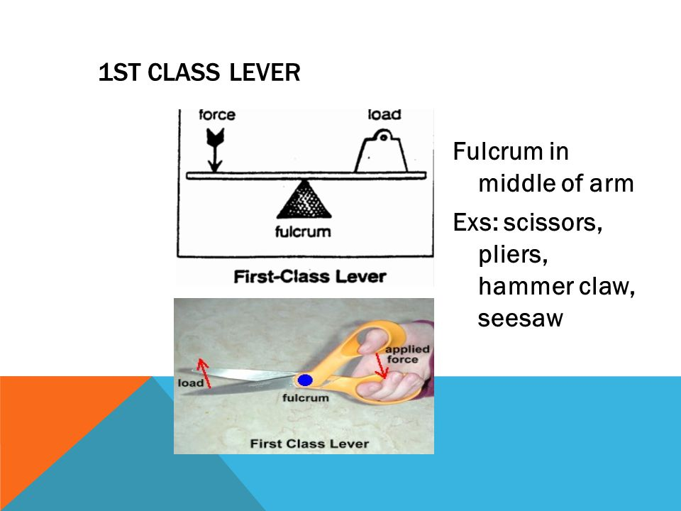 1ST CLASS LEVER Fulcrum in middle of arm Exs: scissors, pliers, hammer claw, seesaw