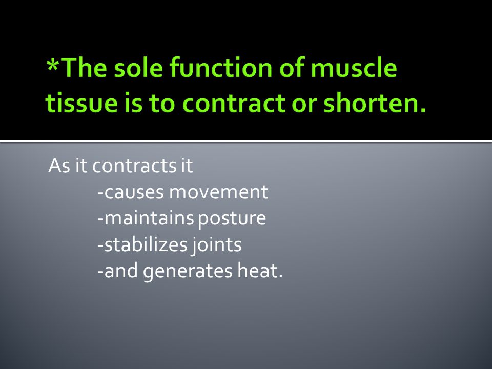 As it contracts it -causes movement -maintains posture -stabilizes joints -and generates heat.