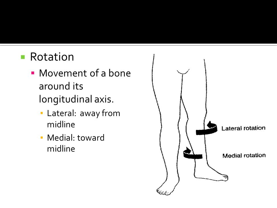  Rotation  Movement of a bone around its longitudinal axis. ▪ Lateral: away from midline ▪ Medial: toward midline
