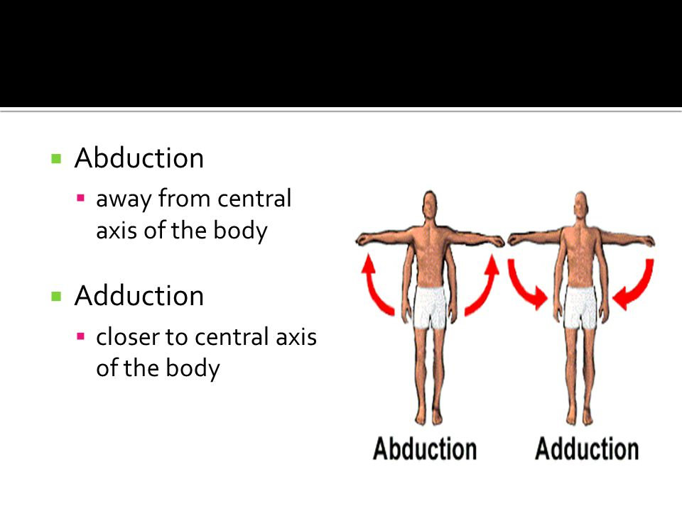  Abduction  away from central axis of the body  Adduction  closer to central axis of the body