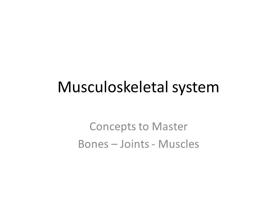 Musculoskeletal system Concepts to Master Bones – Joints - Muscles