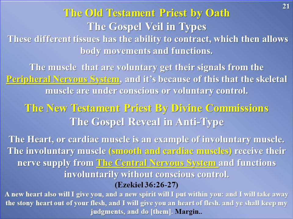 The Old Testament Priest by Oath The Gospel Veil in Types These different tissues has the ability to contract, which then allows body movements and fu