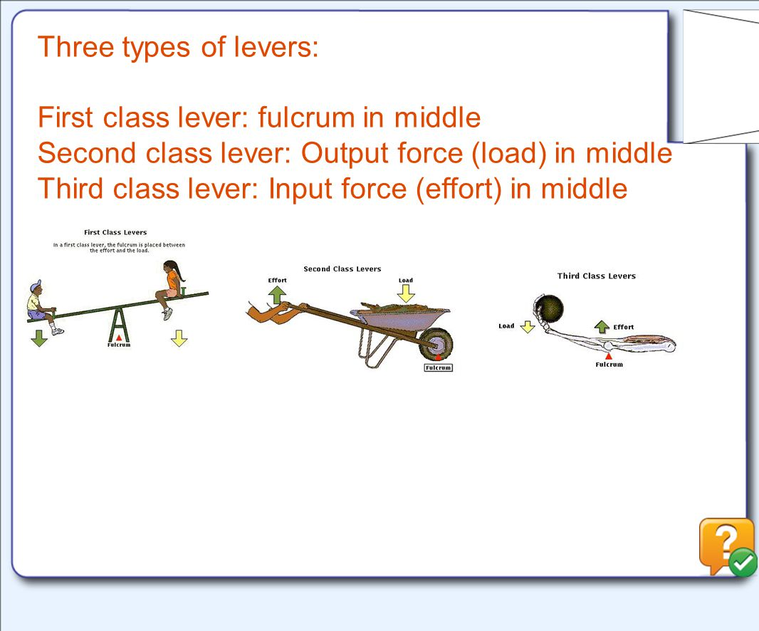 Three types of levers: First class lever: fulcrum in middle Second class lever: Output force (load) in middle Third class lever: Input force (effort) in middle