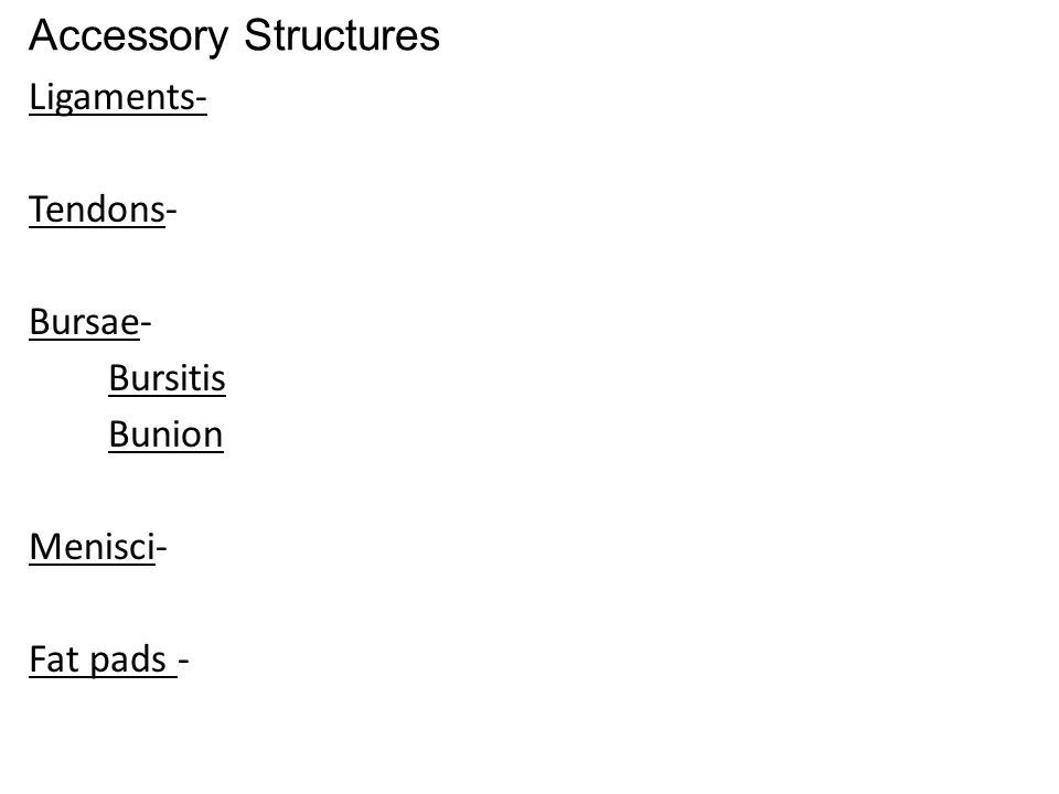 Accessory Structures Ligaments- Tendons- Bursae- Bursitis Bunion Menisci- Fat pads -
