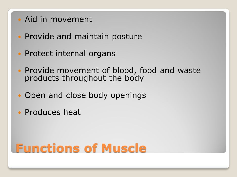 Functions of Muscle Aid in movement Provide and maintain posture Protect internal organs Provide movement of blood, food and waste products throughout the body Open and close body openings Produces heat