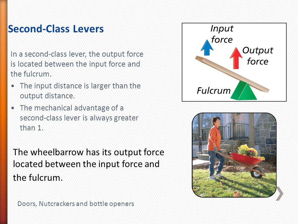 The wheelbarrow has its output force located between the input force and the fulcrum.