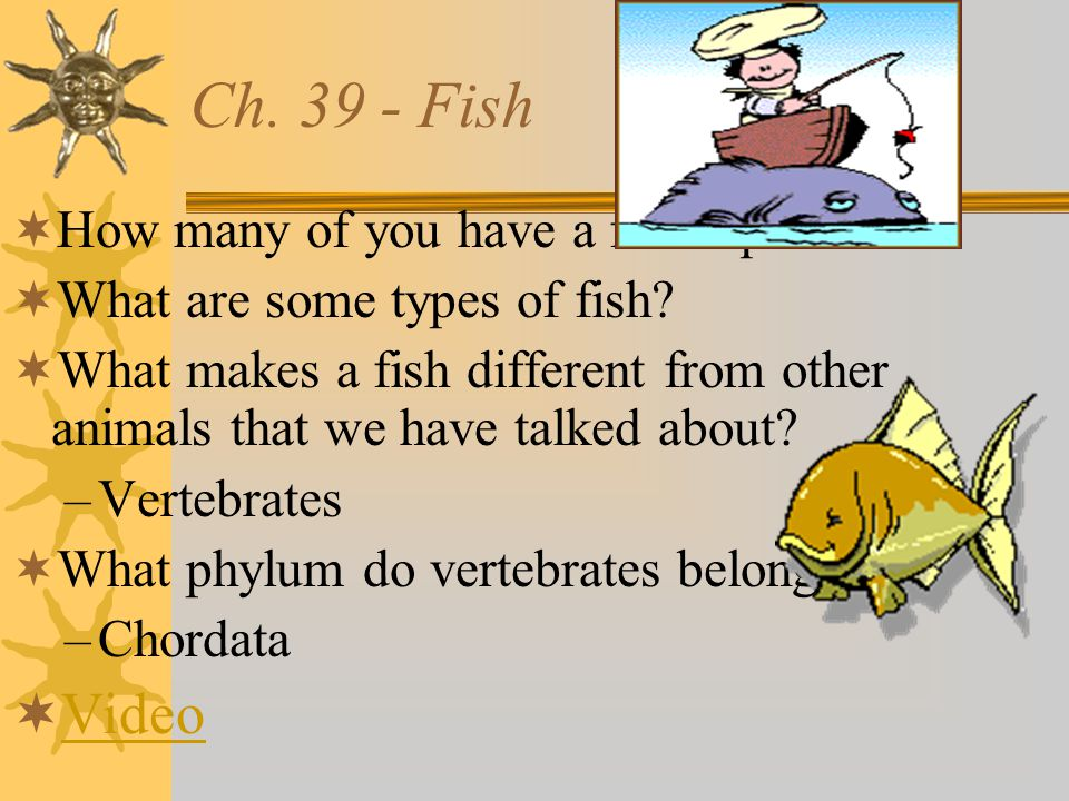 Ch.39 - Fish  How many of you have a fish aquarium.