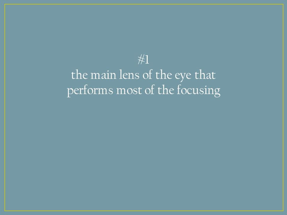 #1 the main lens of the eye that performs most of the focusing