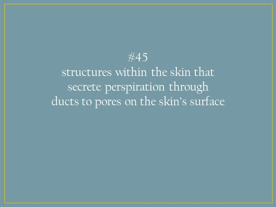 #45 structures within the skin that secrete perspiration through ducts to pores on the skin's surface
