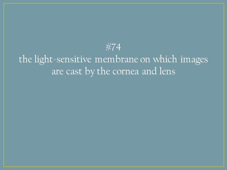 #74 the light-sensitive membrane on which images are cast by the cornea and lens