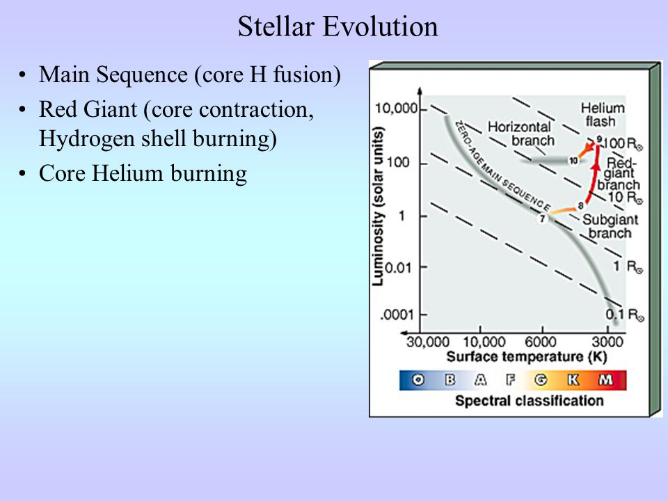 Stellar Evolution Main Sequence (core H fusion) Red Giant (core contraction, Hydrogen shell burning) Core Helium burning 2 nd Giant Branch (core contraction, H, He shell burning) Mass Loss Occurs Here
