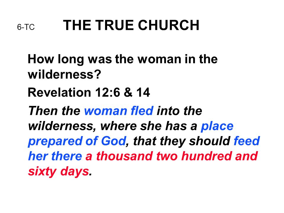 6-TC THE TRUE CHURCH How long was the woman in the wilderness? Revelation 12:6 & 14 Then the woman fled into the wilderness, where she has a place pre