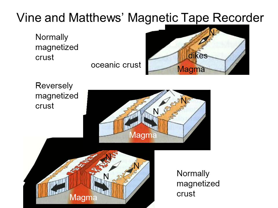 Normally magnetized crust Magma dikes oceanic crust Reversely magnetized crust Normally magnetized crust N N N N N N Magma Vine and Matthews' Magnetic