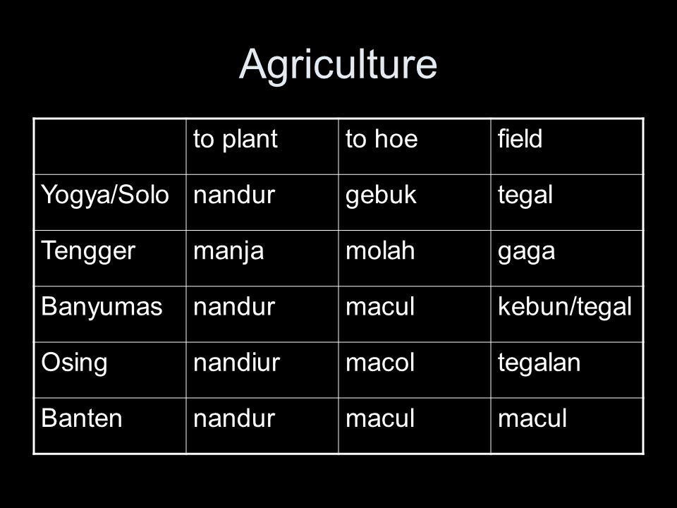 Agriculture to plantto hoefield Yogya/Solonandurgebuktegal Tenggermanjamolahgaga Banyumasnandurmaculkebun/tegal Osingnandiurmacoltegalan Bantennandurmacul